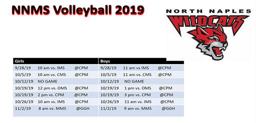 Volleyball 2019
