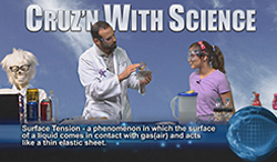 Cruz With Science