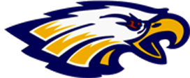 NHS Golden Eagles Logo