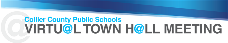 Virtual Town Hall Logo